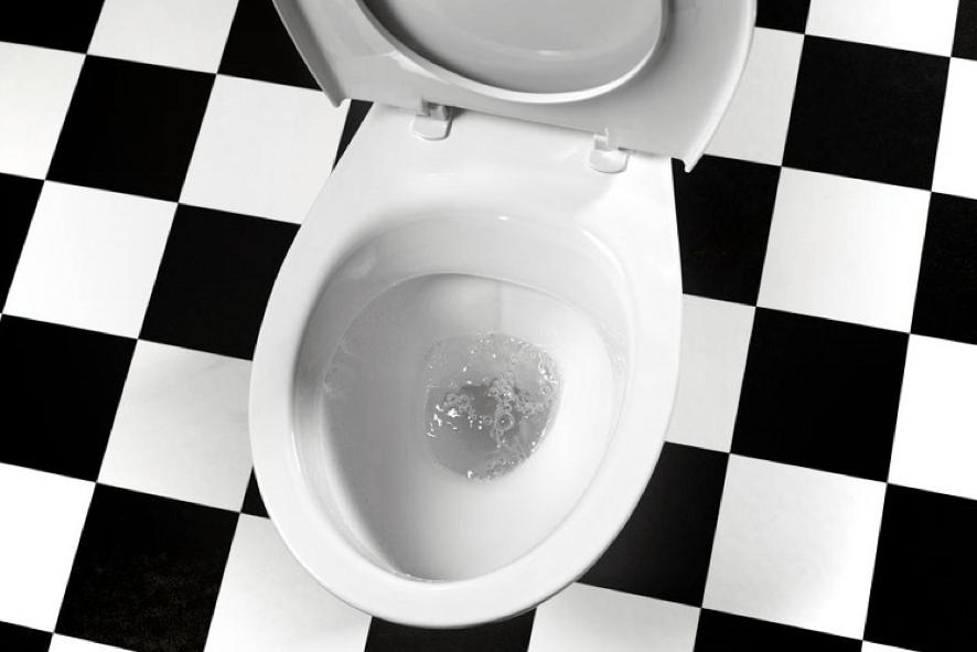 6 dicas para desentupir vaso sanitário sem sujeira
